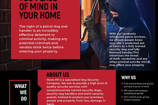 Residential Security